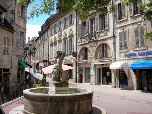 Dole - Fountain of the Fleurs square, houses and shops in the old town