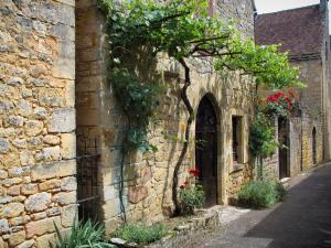 Domme - Stone houses with vineyards and rosebushes, in the Dordogne valley, in Périgord