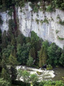 Doubs gorges - The River Doubs, trees along the water and cliff (rock face)