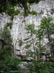 Doubs gorges - Cliff (rock face), the River Doubs and trees