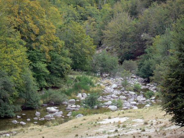 Dourbie gorges - River Dourbie, rocks and trees along the water; in the Cévennes