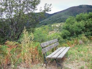 Dourbie gorges - Bench, trees and mountains; in the Cévennes
