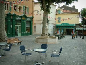 Draguignan - Square featuring a fountain, cafe terraces, plane trees and houses with colourful facades
