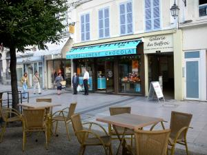 Dreux - Shopping street (Maurice Viollette high street): houses, shops, café terrace and tree