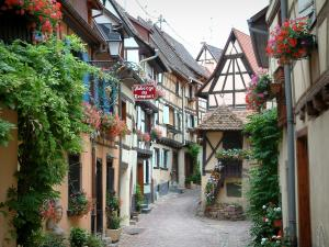 Eguisheim - Narrow paved street with half-timbered houses decorated with flowers, plants and geraniums