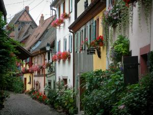 Eguisheim - Colourful houses with plants, flowers and geraniums