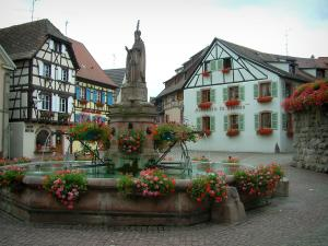 Eguisheim - Square paved with a flower-bedecked fountain and half-timbered houses and windows decorated with geranium flowers