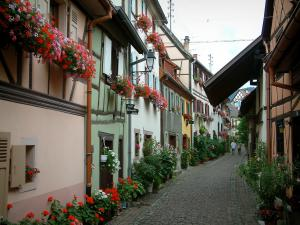 Eguisheim - Narrow paved street lined with colourful houses, flowers, plants and geraniums