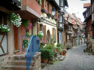 Eguisheim - Narrow paved street with a small stairway and half-timbered houses decorated with flowers, plants and geraniums