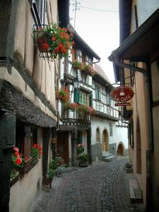 Eguisheim - Narrow paved street lined with half-timbered houses decorated with geranium flowers