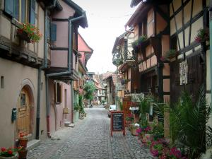 Eguisheim - Narrow paved street, flowers and half-timbered houses decorated with plants, flowers and geraniums