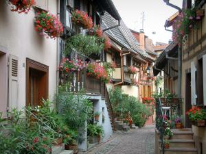 Eguisheim - Houses decorated with flowers, plants and geraniums