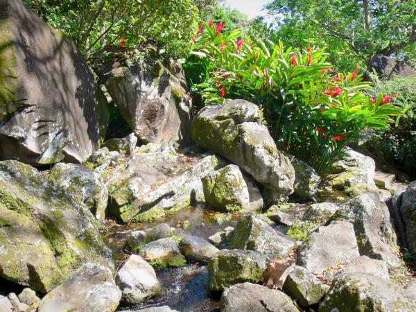 The Engraved Rocks Archaeological Park - Tourism, holidays & weekends guide in the Guadeloupe