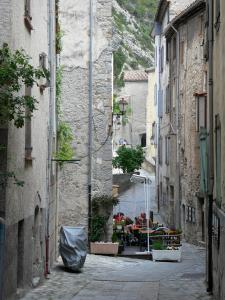 Entrevaux - Alley of the medieval village, facades of houses and café terrace