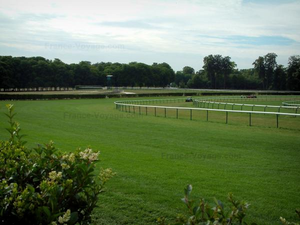 Equestrian sport - Racecourse (race track) in Chantilly, trees in background