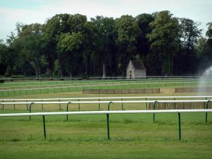 Equestrian sport - Racecourse (race track) in Chantilly and trees