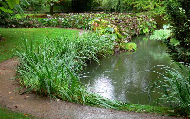 Jardin du pr catelan 8 images de qualit en haute for Definition du jardin