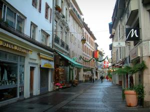 Évian-les-Bains - Nationale street with its houses and its shops