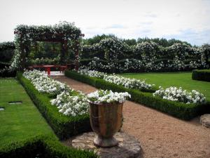 Eyrignac manor house gardens - Rose garden and its white roses, in Black Périgord
