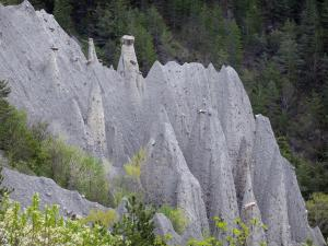Fairy chimneys of Théus - Ballroom: fairy chimneys and trees