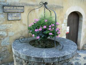 La Ferté-Bernard - Flower-bedecked well and Saint-Lyphard chapel (castle chapel)