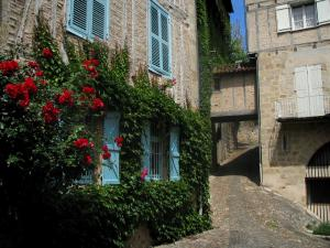 Figeac - Climbing rosebush (red roses), narrow street and stone houses of the old town, in the Quercy