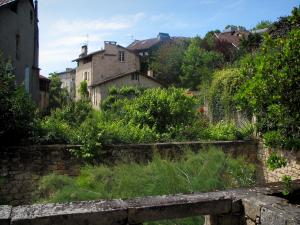 Figeac - Vegetation and houses of the old town, in the Quercy