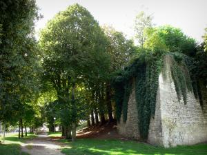 Fismes - Ramparts of the city and shaded walk (path) lined with trees