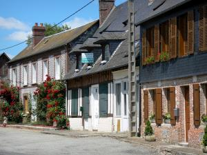 Fleury-la-Forêt - Facades of houses in the village