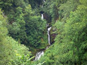 Flumen gorges - Waterfall and trees; in the Upper Jura Regional Nature Park