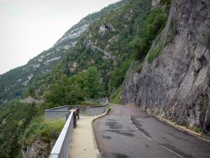 Flumen gorges - Road of the gorges, viewpoint, rock faces and trees; in the Upper Jura Regional Nature Park