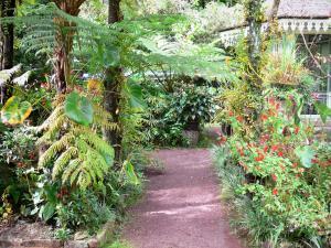 Folio House   Stroll In The Tropical Garden