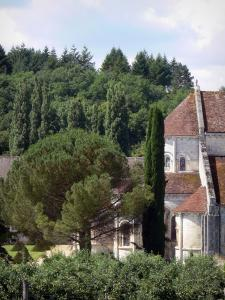 Fontgombault abbey - Notre-Dame Benedictine Abbey: apse of the Romanesque abbey church and trees