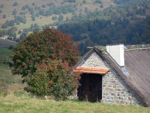 Forez mountains - Jasserie (mountain hut) of Grand Juniper; in the Livradois-Forez Regional Nature Park
