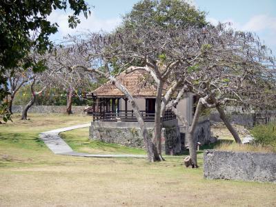 Le Fort Fleur D 201 P 233 E Guide Tourisme Amp Vacances