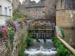 Fougères - Nançon river at the foot of the medieval castle, flowers