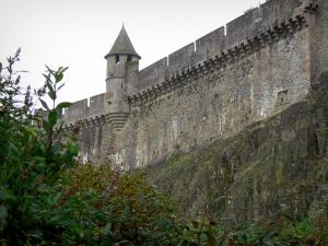 Fougères - Fortified surrounding wall (ramparts) of the castle and shrubs in foreground