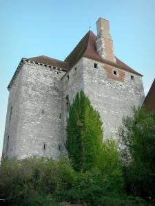 Fourchaud castle - Keep of the medieval fortress; in the town of Besson