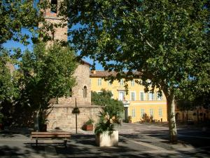 Fréjus - Cathedral (Episcopal set), town hall, shrubs in jars and trees on the Formigé square