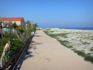 Frontignan-Plage - Promenade, house, beach of the seaside resort and the Mediterranean Sea
