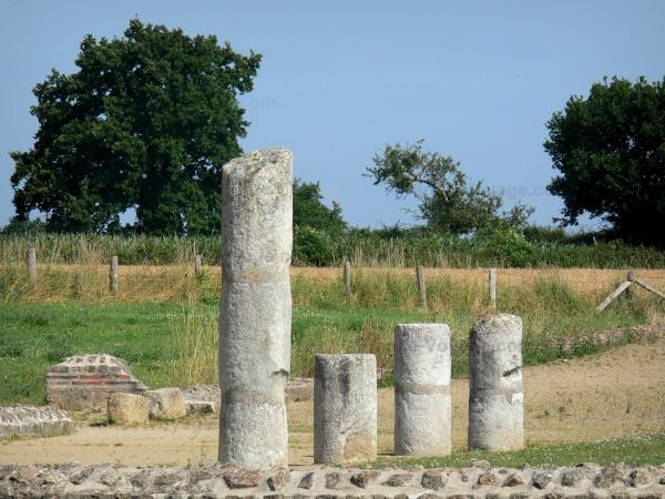 Gallo-Roman town of Jublains - Archaeological site: columns of the Gallo-Roman temple