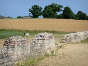 Gallo-Roman town of Jublains - Archaeological site: field near the temple