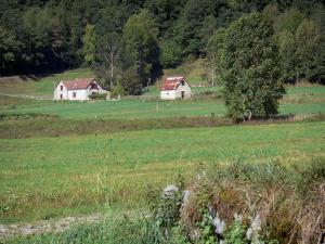 Garbet valley - Pasture, house, barn and trees; in the Ariège Pyrenees Regional Nature Park, in Le Couserans area