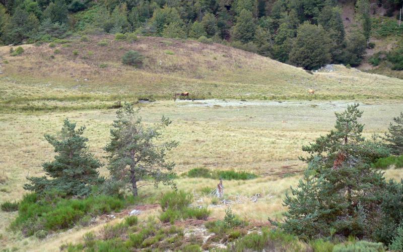Parc National Des C U00e9vennes