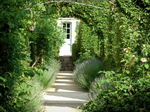 Gardens of the Notre-Dame d'Orsan priory - Alley with lavender and rosebushes