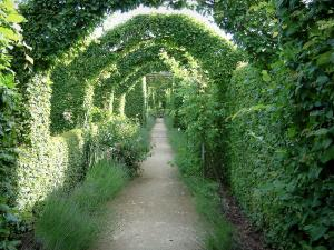 Gardens of the Notre-Dame d'Orsan priory - Narrow path in the medieval garden