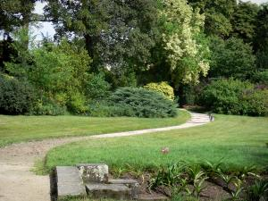 Gardens of the Palace of Fontainebleau - English garden: alley lined with lawns, shrubs and trees