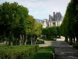 Gardens of the Palace of Fontainebleau - Alleys of linden trees of the Palace of Fontainebleau