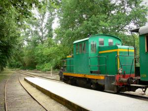 Gascon Landes Regional Nature Park - Marquèze train in Sabres leading to the museum of Grande Lande of Marquèze, and railway lined with trees