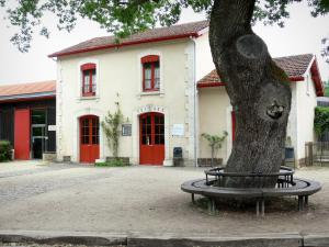Gascon Landes Regional Nature Park - Sabres train station, starting point to visit the museum of Grande Lande of Marquèze